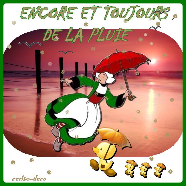 27 Fevrier 2014 Bonjour La Pluie Toujours La Pluie